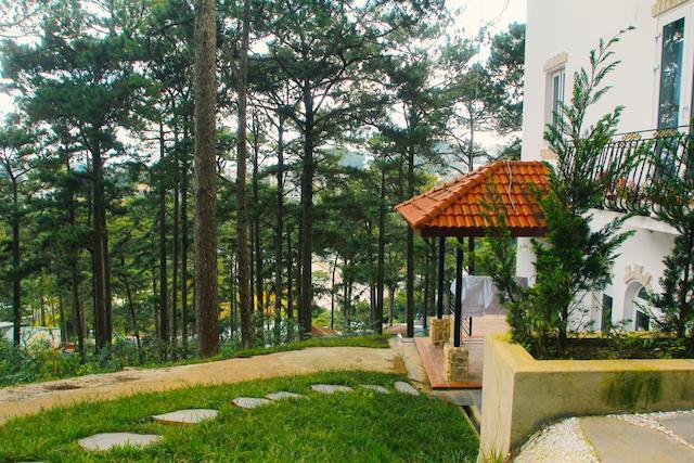 Mẫu biệt thự mái thái 3 tầng trên đồi đẹp 7