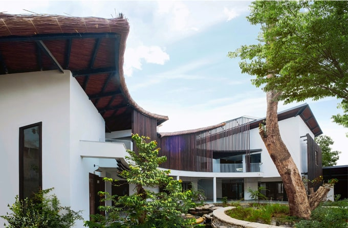 Biệt thự mái lá kiến trúc hiện đại 3